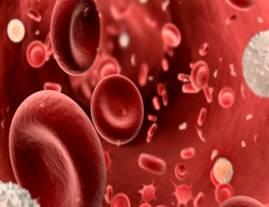 解讀血液製品高危因素